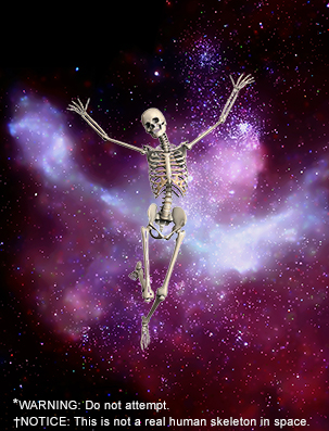 Skeleton in space
