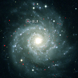 X-ray/Optical Composite Image of M74
